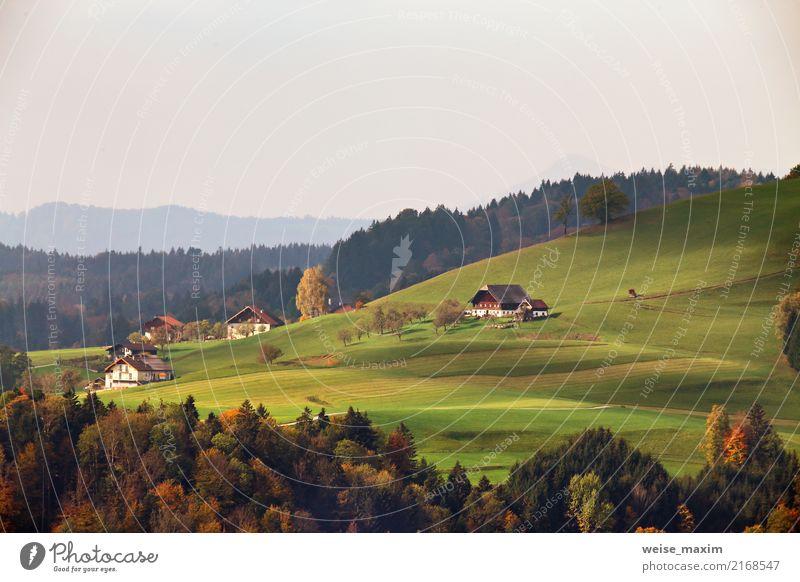 Österreichisches Dorf auf Berghügeln in den Alpen Natur Ferien & Urlaub & Reisen grün Landschaft Baum rot Haus Wald Berge u. Gebirge Straße gelb Herbst Wiese