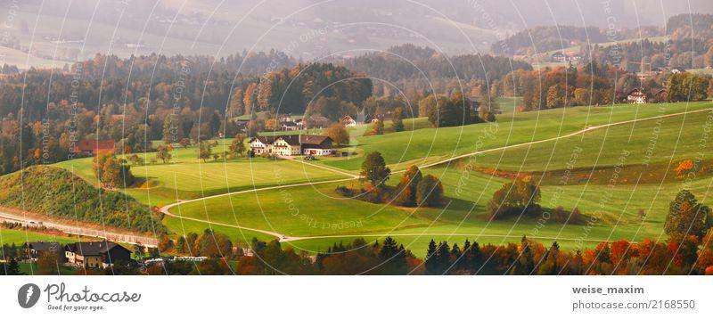 Panoramablick der ländlichen Landschaft des schönen Berges in den Alpen Natur Ferien & Urlaub & Reisen Pflanze Sommer grün Baum rot Haus Ferne Wald