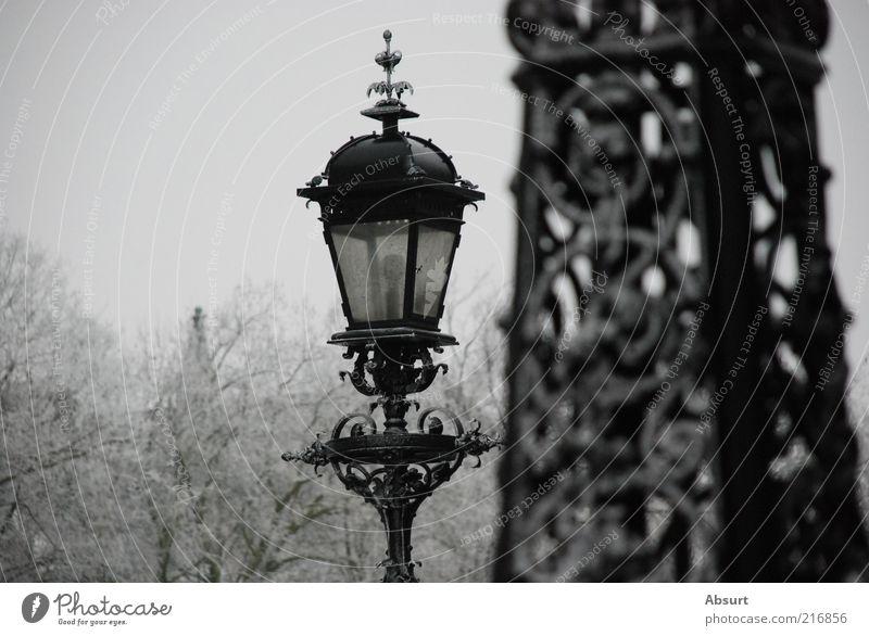 Hamburg in Eis Winter Frost Park historisch schön grau schwarz weiß Stimmung Farbfoto Außenaufnahme Detailaufnahme Menschenleer Textfreiraum links Tag