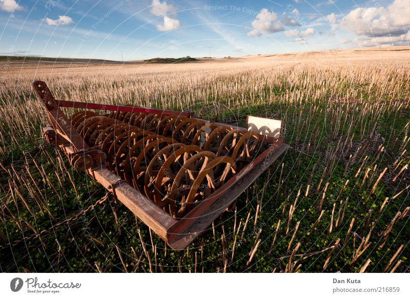 Herbstacker Natur Landschaft Erde Himmel Wolken Schönes Wetter Feld stachelig blau braun gelb ruhig Landwirtschaftliche Geräte Ackerbau Farbfoto Außenaufnahme