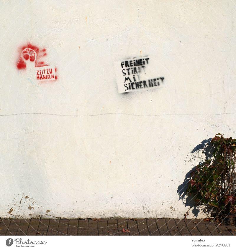 paradox Politik & Staat Pflanze Efeu Wildpflanze Mauer Wand Fassade Bürgersteig Pflastersteine Putzfassade Stein sprechen machen Aggression rot schwarz Tatkraft