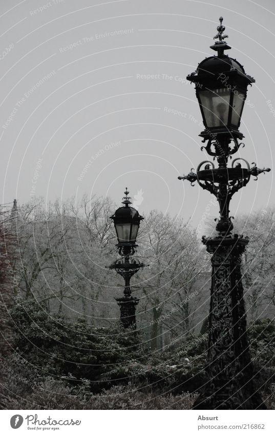 Garden of Ice alt kalt Park Laterne Straßenbeleuchtung altmodisch Schnörkel Deutschland Jugendstil Schmiedeeisen Schmiedekunst