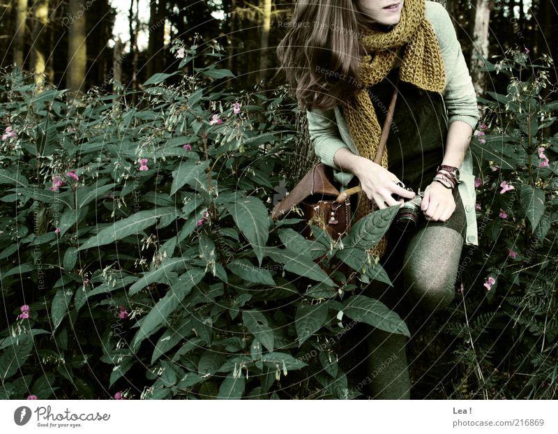 kurze Rast Fotokamera feminin 1 Mensch Herbst Wildpflanze Wald Tasche Schal brünett Lächeln Neugier Gedeckte Farben Außenaufnahme Textfreiraum links Tag