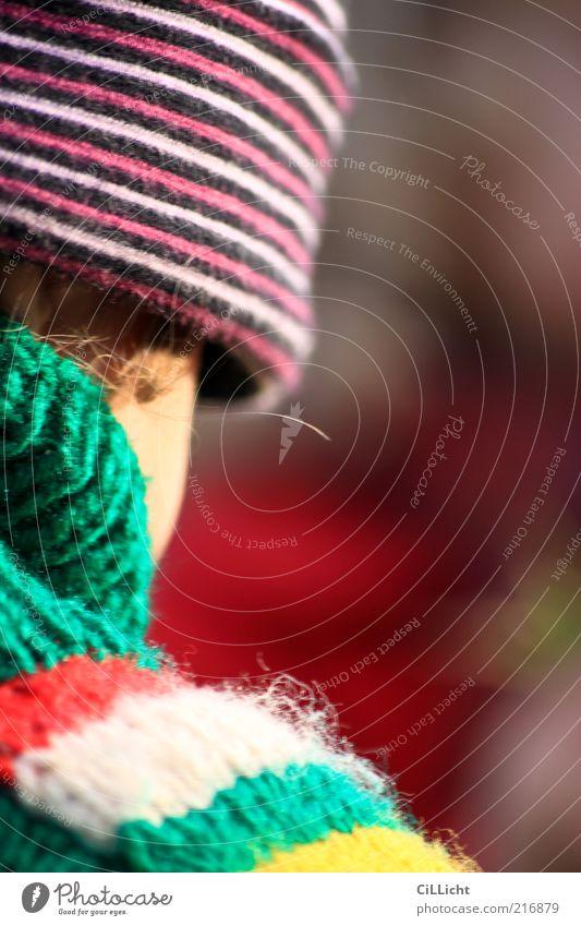 Kindeswelt Mensch Kind grün rot Kopf träumen Bekleidung Kindheit Stoff niedlich Mütze Kleinkind Pullover gestreift Strickjacke Wollmütze