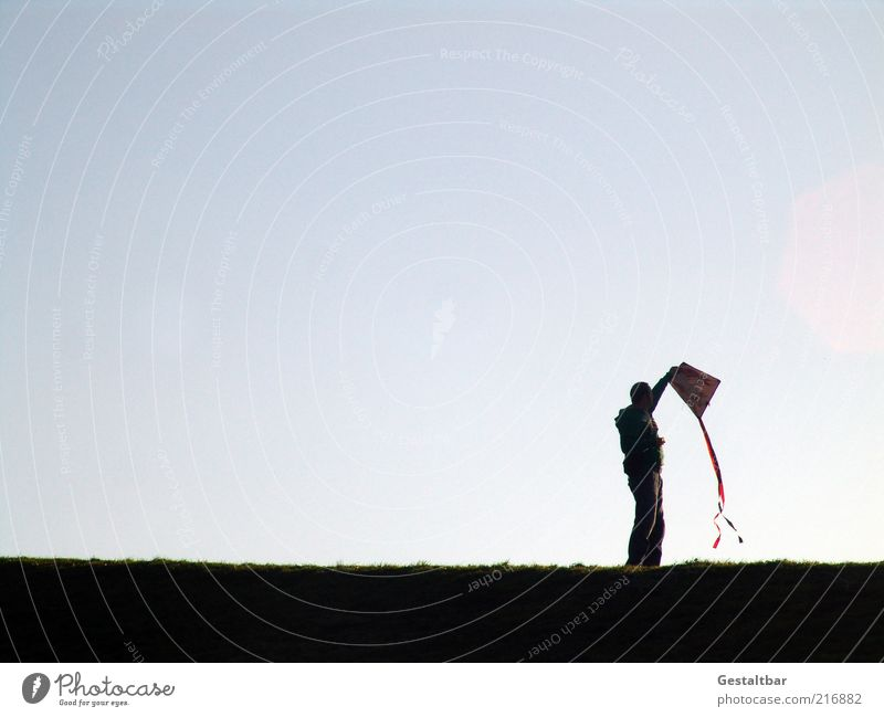 Drachen können fliegen Mensch Himmel Mann blau schwarz Erwachsene Herbst Wiese Landschaft Bewegung Gras Horizont Zufriedenheit Wind Erde Freizeit & Hobby
