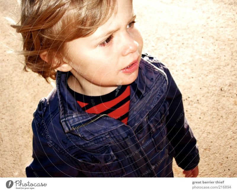 Kind Junge Jacke blau Mensch rot Gesicht Kopf Kindheit blond gehen natürlich maskulin Kleinkind Wachsamkeit gestreift