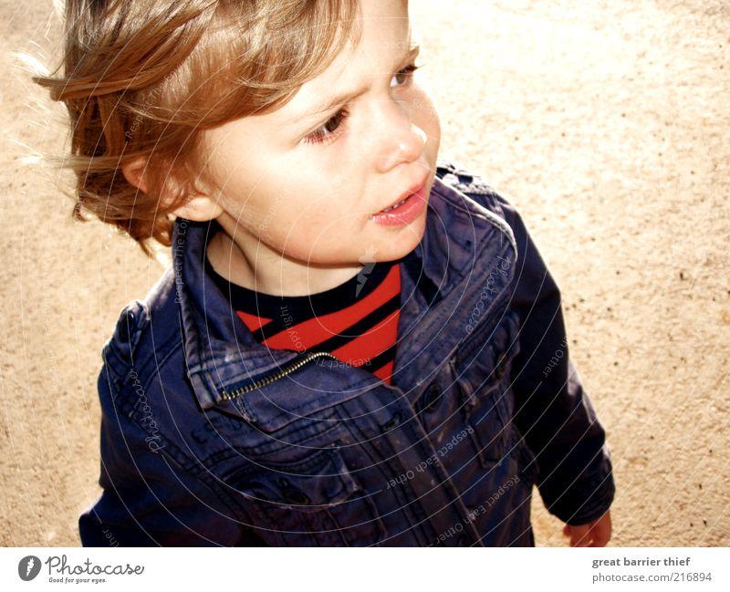 Kind Junge Jacke blau Mensch maskulin Kleinkind Kindheit Kopf 1 1-3 Jahre gehen natürlich rot Wachsamkeit Blick blond kurzhaarig Jeansjacke gestreift Gesicht