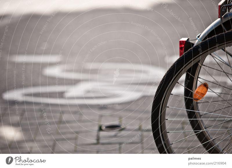 Fahr Rad! Fahrrad Fahrradreifen Ferien & Urlaub & Reisen Verkehr Verkehrsmittel Verkehrswege Straße grau Farbfoto Gedeckte Farben Außenaufnahme Menschenleer Tag