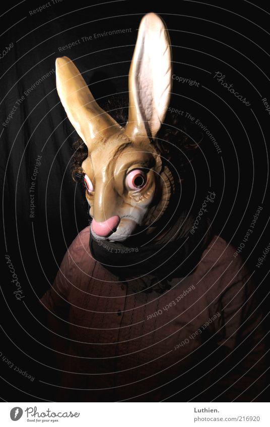 darkRabbit Mensch 1 Maske Tier Hase beobachten Blick außergewöhnlich bedrohlich Coolness dunkel gruselig lustig Neugier trashig verrückt braun rosa bizarr
