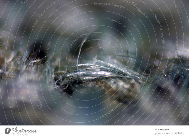 Teppich Makro Haare & Frisuren grau dreckig groß nah dünn Faser