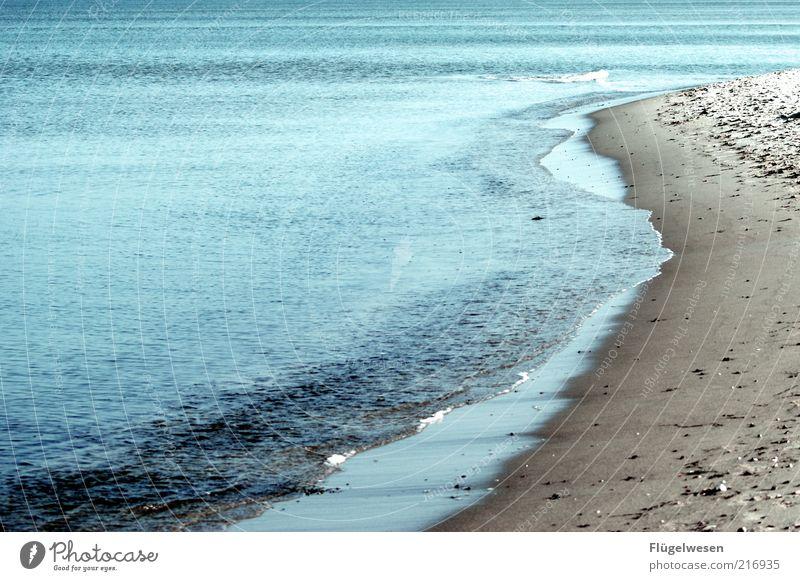 Gischt schlägt ins Gesicht Wasser Meer Sommer Strand Ferien & Urlaub & Reisen Einsamkeit Ferne Herbst Küste Wellen Lebensfreude Idylle Bucht Ostsee Nordsee