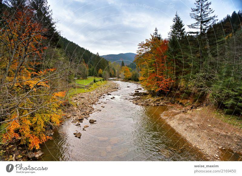 Himmel Natur Ferien & Urlaub & Reisen Baum Landschaft rot Blatt Wolken Ferne Wald Berge u. Gebirge gelb Umwelt Herbst Wiese Tourismus