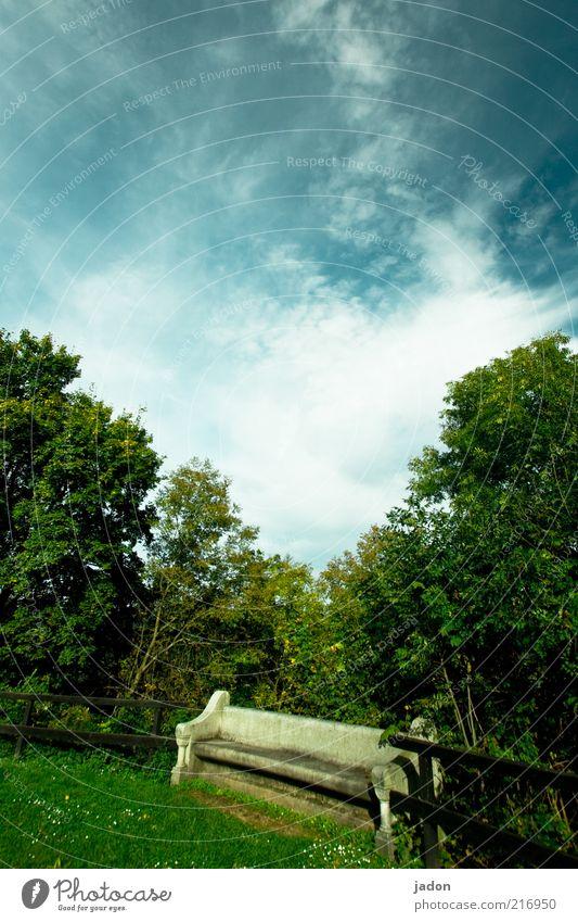 gud bänk. elegant Erholung Möbel Natur Landschaft Sträucher Park Stein alt schön Einsamkeit ästhetisch Verfall Vergänglichkeit Bank Parkbank Außenaufnahme