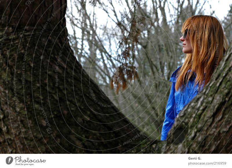 ZwischenSpiel Frau Baum Brille Wald langhaarig Sonnenbrille zwischen verstecken verdeckt Profil Seite Porträt royalblau Baumrinde dunkelgrün Ast Jacke