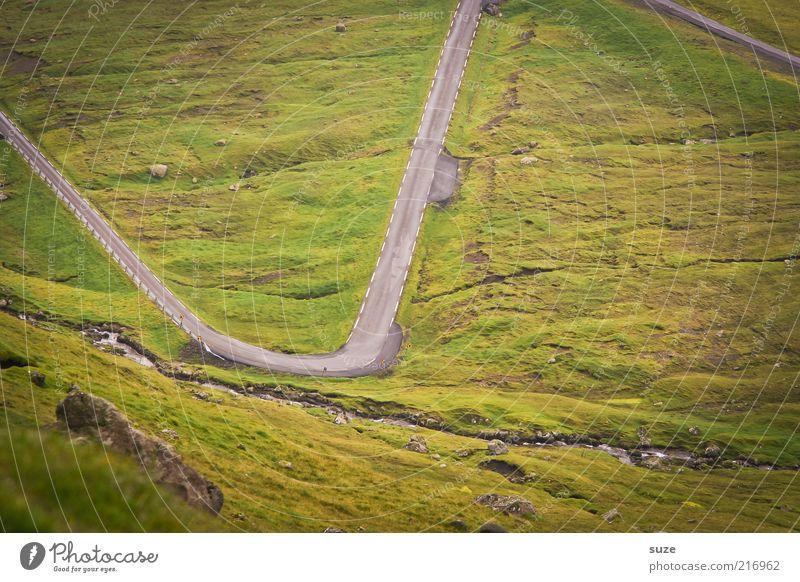 Nu aber zackisch Berge u. Gebirge Umwelt Natur Landschaft Urelemente Erde Wetter Wiese Straße Wege & Pfade außergewöhnlich grün gefährlich Føroyar Zickzack