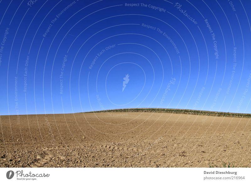 Weites Land Natur Landschaft Himmel Wolkenloser Himmel Herbst Schönes Wetter Wärme Dürre Feld blau braun Erde Boden Horizont Landwirtschaft gepflügt trocken