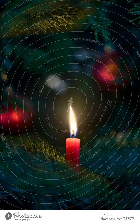 Kerze Weihnachten & Advent Gefühle Feste & Feiern glänzend Hoffnung Weihnachtsbaum Dekoration & Verzierung Zeichen Tanne leuchten Christbaumkugel Handel