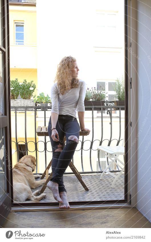 mit Hund Jugendliche Junge Frau Sommer Stadt schön Freude 18-30 Jahre Erwachsene Stil Wohnung Häusliches Leben Zufriedenheit ästhetisch authentisch