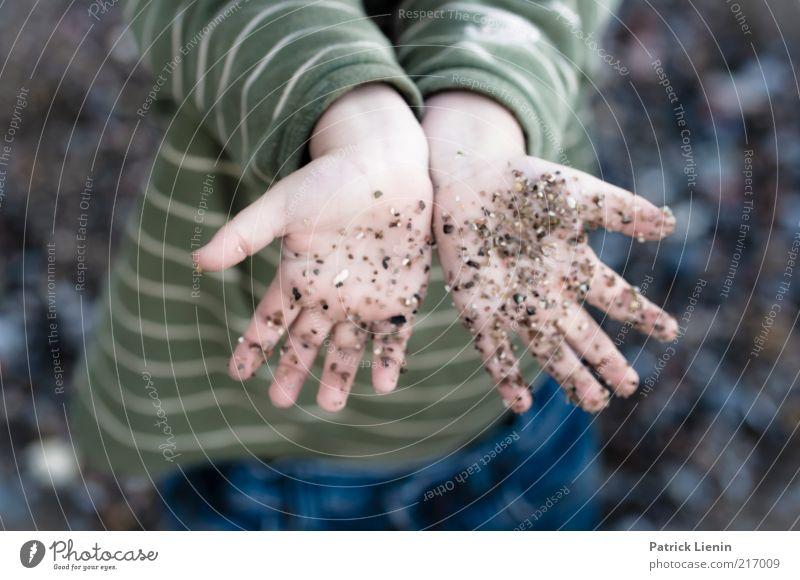 Clap your hands say Yeah Freude Glück Spielen Strand Kind Mensch Junge Hand Finger 3-8 Jahre Kindheit Umwelt Natur Küste Stein berühren entdecken dreckig frech