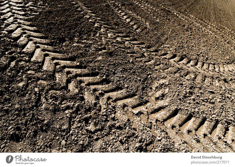 TRÄGÄ FAHRN Erde Dürre Feld braun Traktorspur Reifenprofil Spuren Lehm Ackerbau Landwirtschaft gepflügt trocken diagonal Farbfoto Außenaufnahme Detailaufnahme