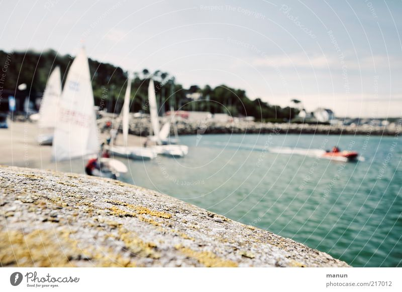 Segeln gehen Natur Wasser Ferien & Urlaub & Reisen Meer Sommer Umwelt Landschaft Küste Stein Freizeit & Hobby Ausflug Tourismus außergewöhnlich Lifestyle Hafen