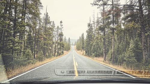 Regnerische Bergstraße. Ferien & Urlaub & Reisen Ausflug Abenteuer Berge u. Gebirge Natur Regen Wald Straße Autobahn PKW authentisch nass retro grün Stimmung