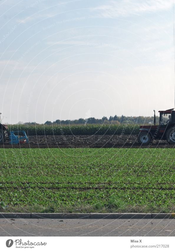 hinten wie vorne Feld Traktor fahren dreckig Landwirt Feldarbeit pflügen Straße Landwirtschaft Herbst Farbfoto Außenaufnahme Textfreiraum oben Tag Ernte