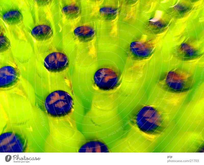 durch die brille der promille blau grün Farbe gelb Bewegung mehrere Glas viele Reihe Flasche Alkohol Hauskatze Alkoholisiert obskur neonfarbig Gully