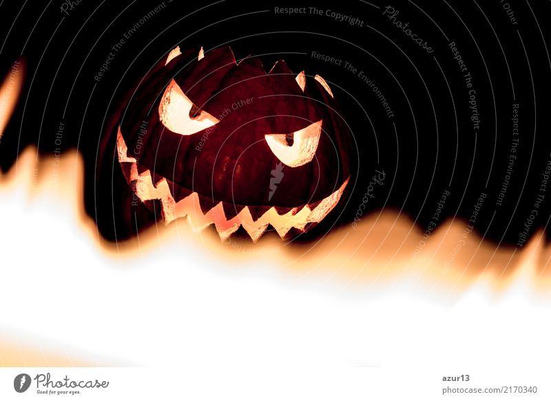 Spooky smiling halloween pumpkin in hot burning hell fire flames schön Freude dunkel schwarz Gesicht gelb Lifestyle Herbst Hintergrundbild Gefühle lachen klein