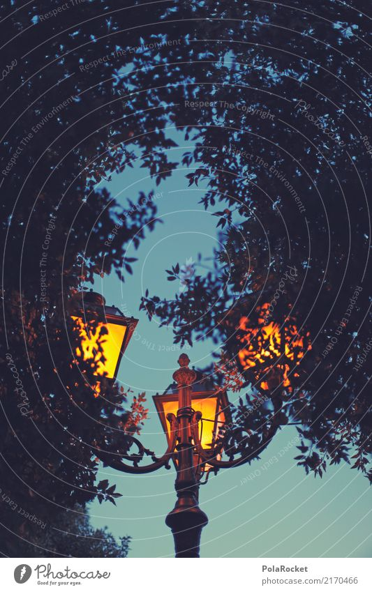 #A# Bringing Light Natur ästhetisch Licht Straßenbeleuchtung Olivenbaum mediterran dezent Idylle Abenddämmerung Urlaubsstimmung Zweiteblickschönheit