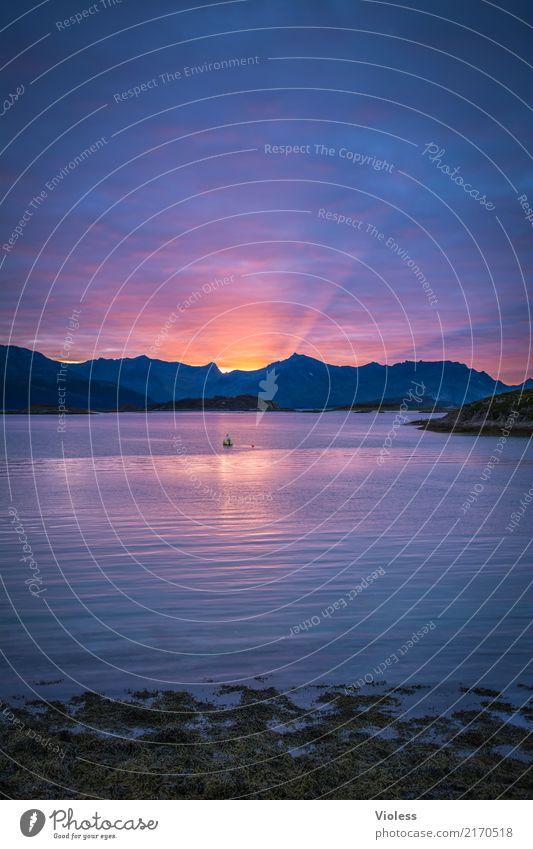 Zeit zum Entspannen Nordsee Dänemark Sonnenuntergang Dämmerung Meer Küste Seeufer blau ruhig Erholung leuchten Sonnenstrahlen Reflexion & Spiegelung