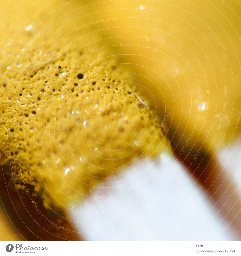 gelb Hintergrundbild Streichholz Anschnitt Bildausschnitt Detailaufnahme Makroaufnahme Schwefel porös