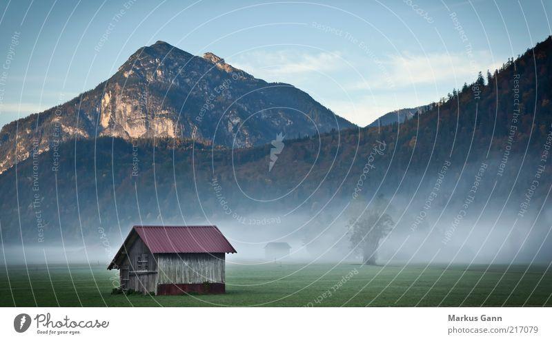 Hütte im Alpenvorland Natur Baum Wald dunkel kalt Wiese Herbst Berge u. Gebirge grau Landschaft Deutschland Nebel Wetter Gipfel