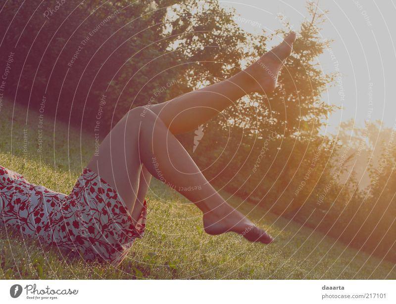Mensch Natur Jugendliche schön Baum Pflanze Sonne Sommer feminin Garten Gras Bewegung Erwachsene Beine Park