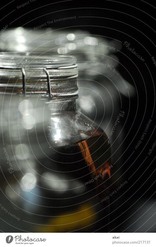 Transparent Glas Totes Tier dunkel grau Einmachglas formaldehyd Farbfoto Innenaufnahme Kunstlicht Schwache Tiefenschärfe Tierpräparat Menschenleer Nahaufnahme
