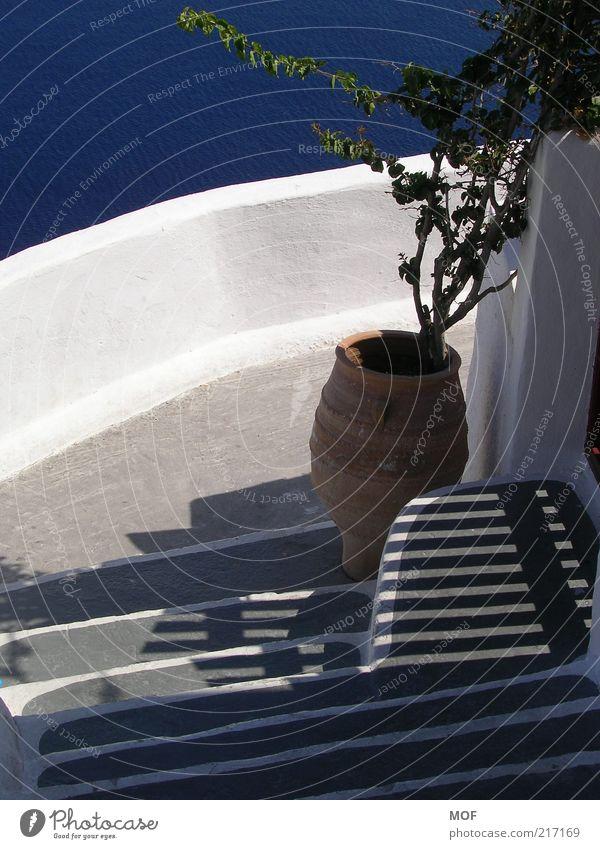Schattenspiel harmonisch Meer Insel Wasser Sonnenlicht Schönes Wetter Topfpflanze Treppe Stein Streifen Ferien & Urlaub & Reisen natürlich blau weiß Romantik
