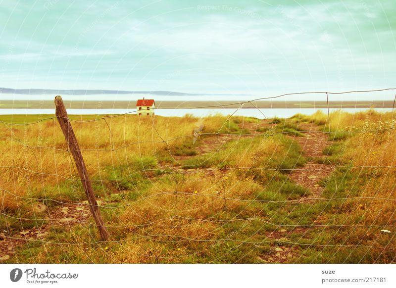 Weg zum Haus Natur Ferien & Urlaub & Reisen Einsamkeit Landschaft Ferne Umwelt Wiese Wege & Pfade Küste See Horizont Idylle Schönes Wetter Urelemente Fluss