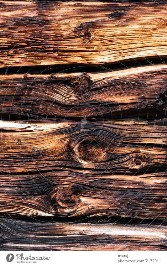 Ton in Ton | Honigbraun in allen Tönen Mauer Wand Blockbohlen alt dunkel historisch nachhaltig verwittert Zeichen der Zeit Vergangenheit Patina Hintergrundbild