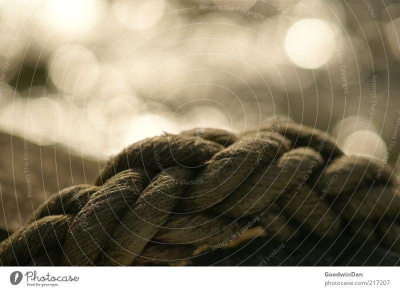 Küstenmagie IV Wasser alt Stimmung glänzend Wetter Umwelt Seil trist fest Urelemente Knoten geflochten