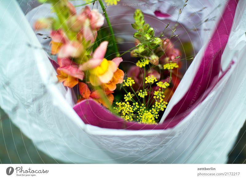 Geburtstag Blume Blüte Geschenk Güterverkehr & Logistik Blumenstrauß Verpackung Tüte tragen Tasche Plastiktüte verpackt Sack einpacken