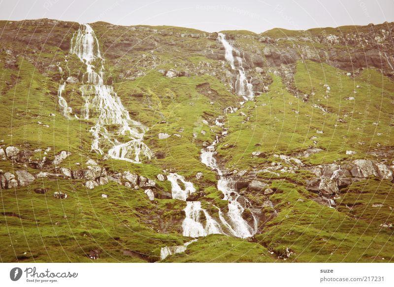 Irgendein fosschen Berge u. Gebirge Wasser Klima Wetter Hügel Felsen Wasserfall authentisch kalt wild grün Føroyar fließen Berghang Farbfoto Gedeckte Farben