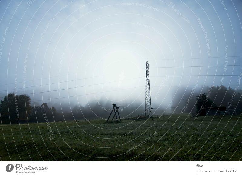 going am wilden kaiser Umwelt Natur Landschaft Wetter Nebel Pflanze Baum Wiese Feld Alpen Berge u. Gebirge kalt Strommast Farbfoto Außenaufnahme Morgen
