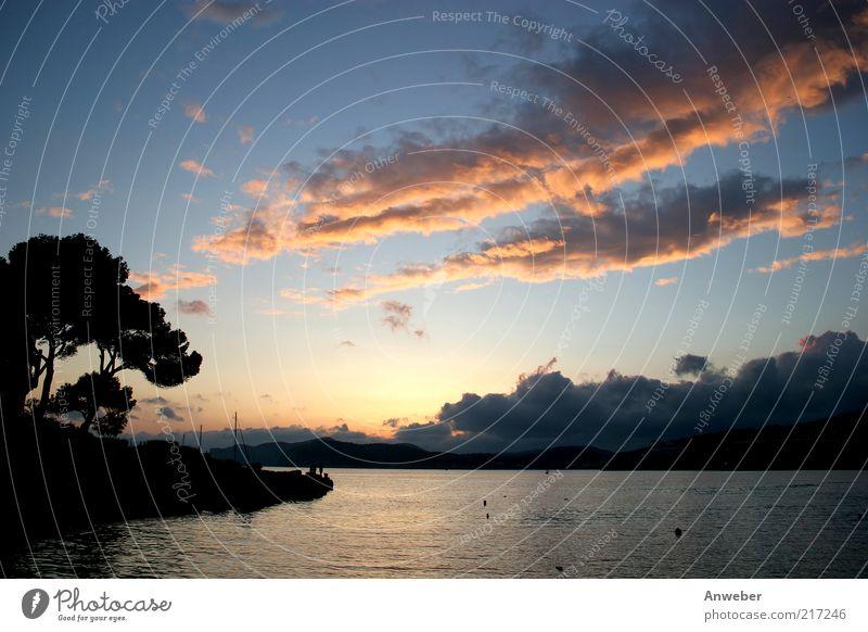 Schöner Sonnenuntergang auf Malle Natur Wasser Himmel Baum Meer blau Sommer Ferien & Urlaub & Reisen Wolken Gefühle Landschaft Luft Stimmung orange Küste Wellen