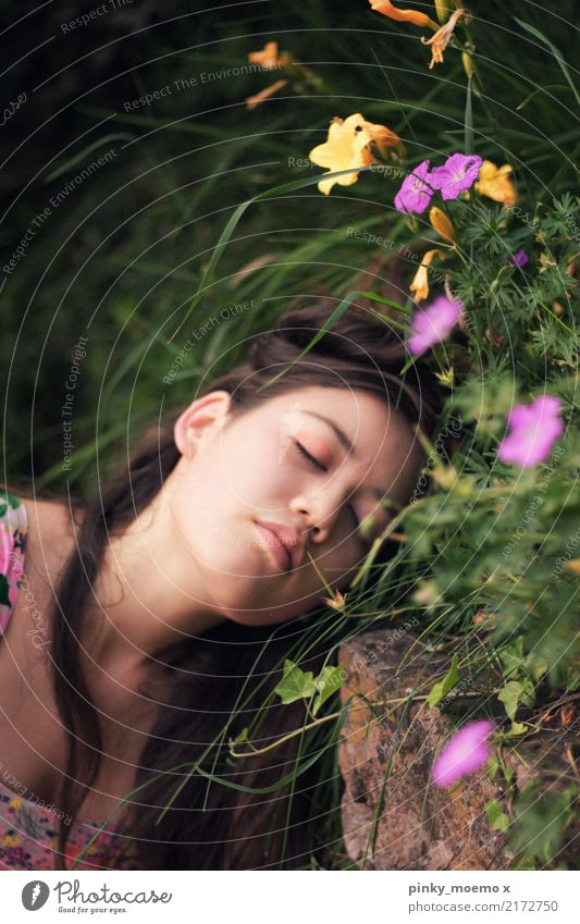 Blütentraum feminin Junge Frau Jugendliche Gesicht 1 Mensch 18-30 Jahre Erwachsene Natur Pflanze Blume Gras brünett langhaarig Gefühle Stimmung Optimismus Kraft