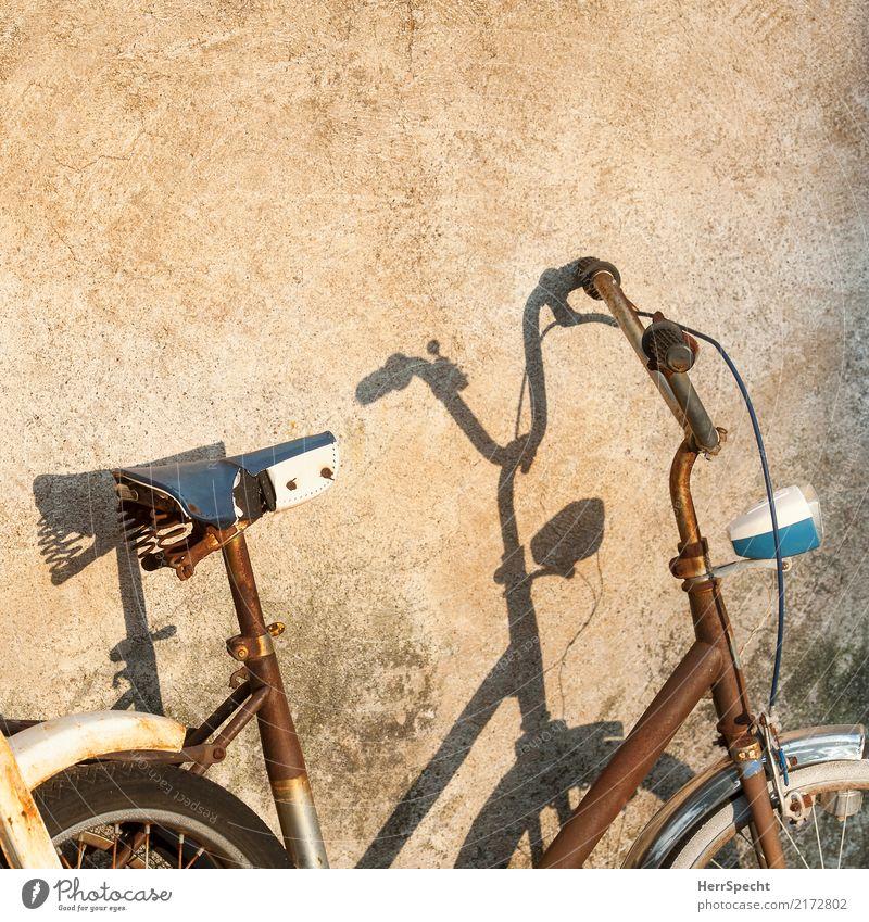 Schattenrost alt Wand Mauer außergewöhnlich braun retro Fahrrad ästhetisch trist Fahrradfahren Vergänglichkeit Verfall Rost trashig Fahrzeug Schattenspiel