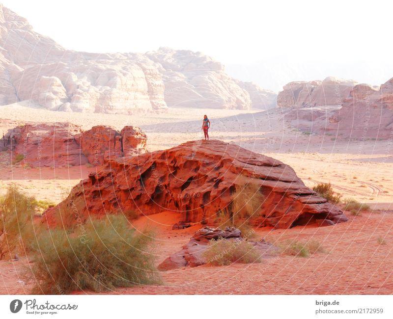 Jordanien! Mensch Frau Natur Ferien & Urlaub & Reisen Jugendliche Junge Frau Sonne Landschaft Erholung Einsamkeit ruhig Ferne 18-30 Jahre Erwachsene Wärme