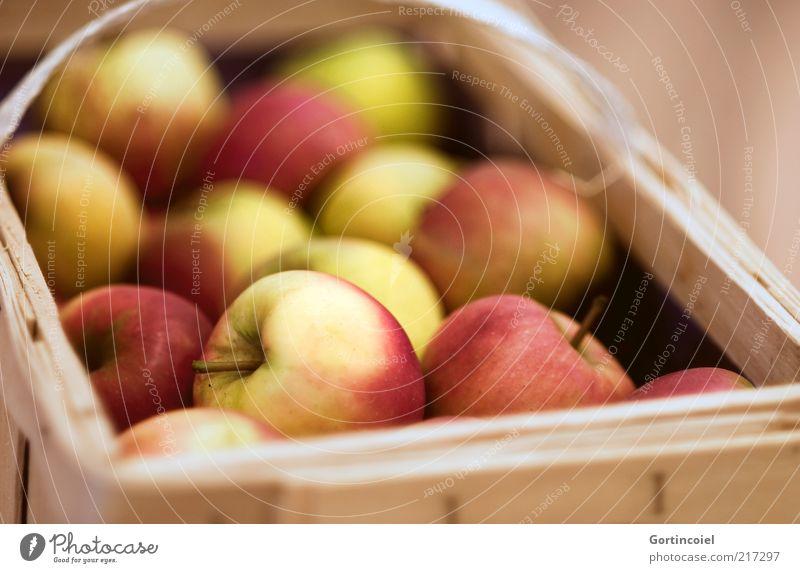 Erntedank rot Ernährung gelb Herbst Lebensmittel Frucht mehrere Apfel lecker viele ökologisch Kiste Bioprodukte Korb Dinge