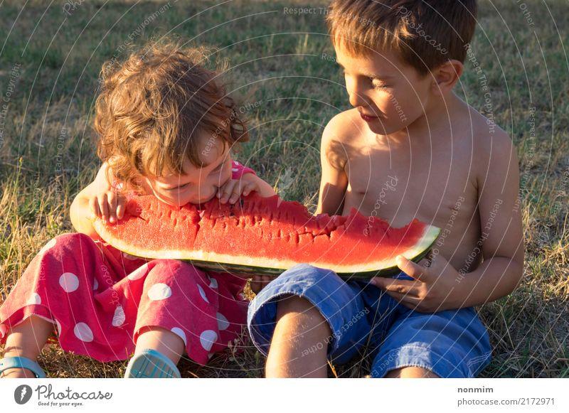 Geschwister, die riesige Scheibe der reifen Sommerwassermelone essen Frucht Freude Kind Junge Schwester Wärme Wiese Lächeln saftig rot Gesundheit Wassermelone