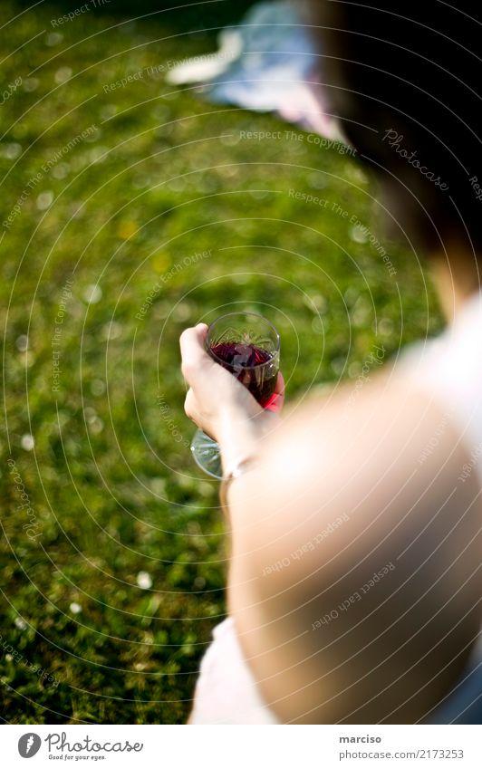 Wein Picknick Getränk trinken Alkohol Glas Weinglas Lifestyle Stil Freude Freizeit & Hobby Camping Sommerurlaub Garten Feste & Feiern Essen Junge Frau