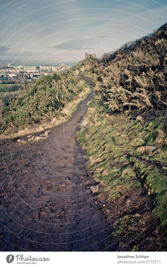 Weg zum Arthur's Seat, Edinburgh Umwelt Natur Landschaft Sommer Herbst Schönes Wetter Gras Hügel Berge u. Gebirge ästhetisch Abenteuer Beginn anstrengen